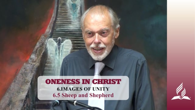 6.5 Sheep and Shepherd – IMAGES OF UNITY | Pastor Kurt Piesslinger, M.A.